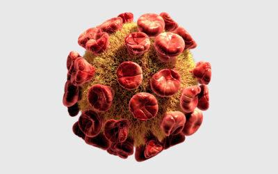 Corona-Virus: Update und aktuelle Infos